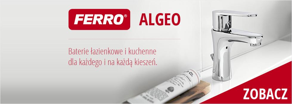 Ferro Algeo