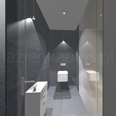 Ami Interior1