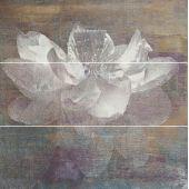 Paradyż Manteia dekor ścienny 60x60 cm motyw A wielokolorowy poler