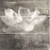 Paradyż Manteia dekor ścienny 60x60 cm motyw A grafit/biały
