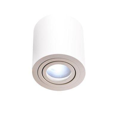 Orlicki Design Rullo Bianco IP44 lampa podsufitowa 1x8W biała
