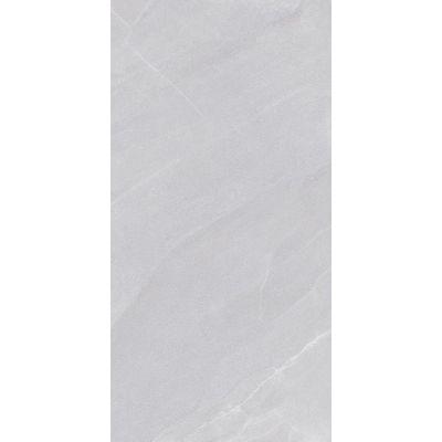 Nowa Gala Stonehenge płytka podłogowa natura 59,7 cmx119,7 cm jasnoszary Sh10